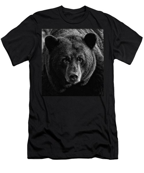Adult Male Black Bear Men's T-Shirt (Slim Fit) by Coby Cooper
