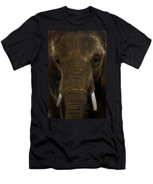 Men's T-Shirt (Slim Fit) featuring the photograph African Elephant by Michael Cummings