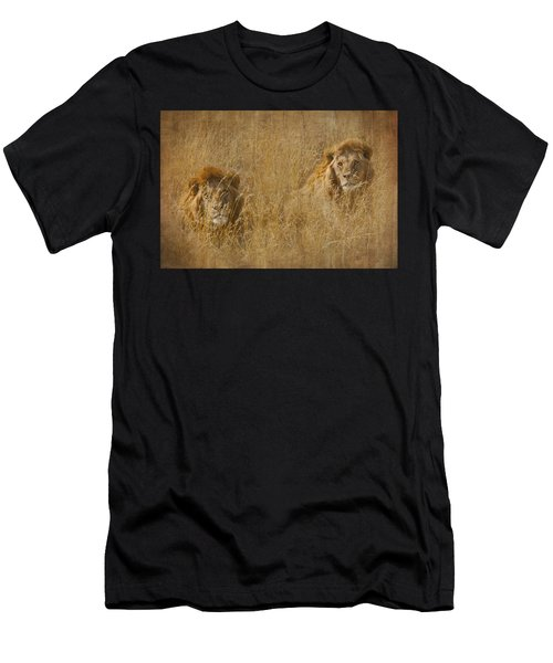 African Lion Brothers Men's T-Shirt (Athletic Fit)