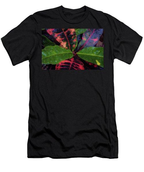After The Rain Has Fallen Men's T-Shirt (Athletic Fit)