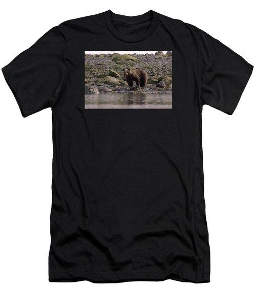 Alaskan Brown Bear Dining On Mollusks Men's T-Shirt (Athletic Fit)