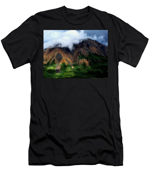Alaskan Grandeur Men's T-Shirt (Athletic Fit)