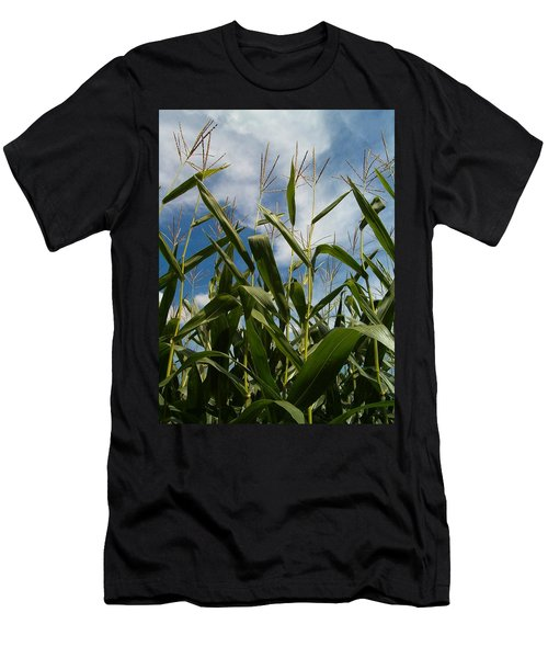 All About Corn Men's T-Shirt (Slim Fit) by Sara  Raber