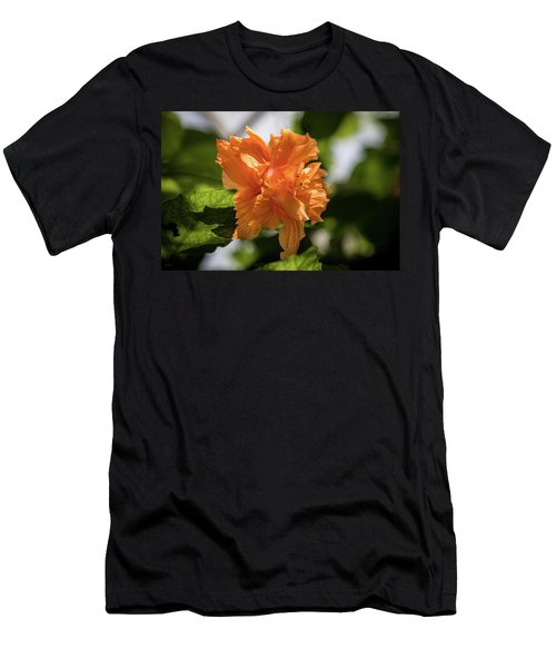 Allan Gardens Orange Men's T-Shirt (Athletic Fit)