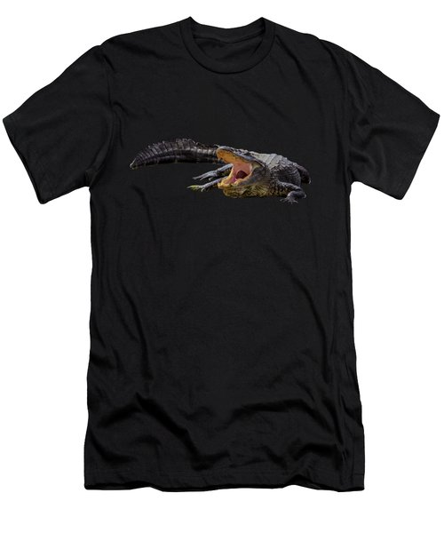 Alligator In Florida Men's T-Shirt (Slim Fit) by Zina Stromberg