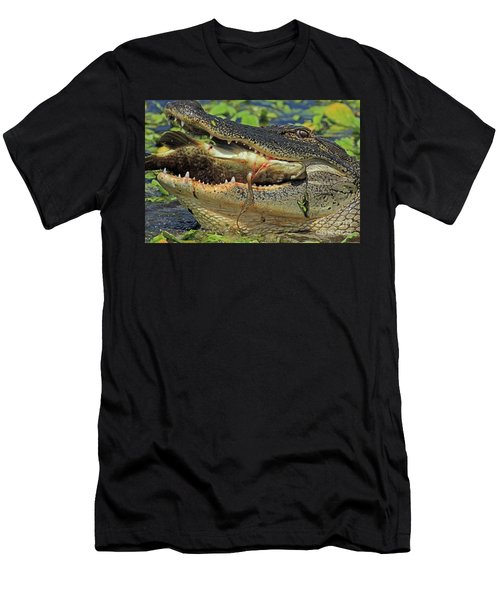 Alligator With Tilapia Men's T-Shirt (Athletic Fit)