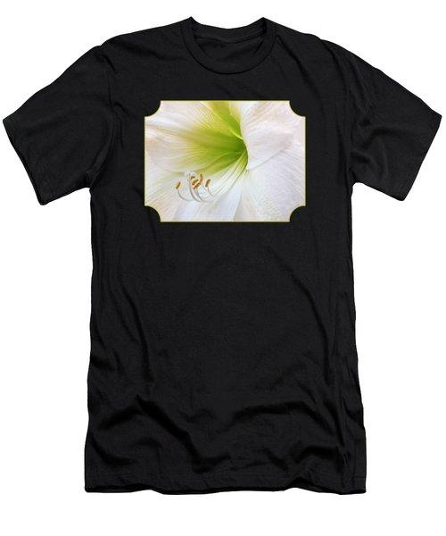 Alluring Amaryllis Square Men's T-Shirt (Athletic Fit)