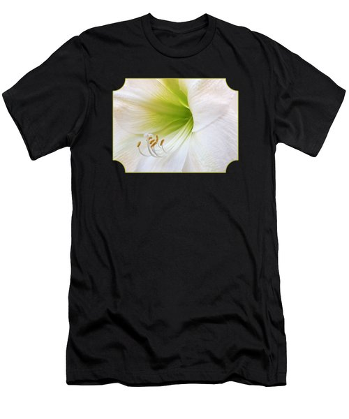 Alluring Amaryllis Square Men's T-Shirt (Athletic Fit)