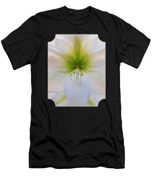 Alluring Amaryllis Vertical Men's T-Shirt (Athletic Fit)