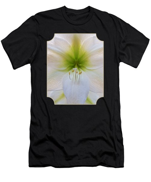 Alluring Amaryllis Vertical Men's T-Shirt (Athletic Fit)