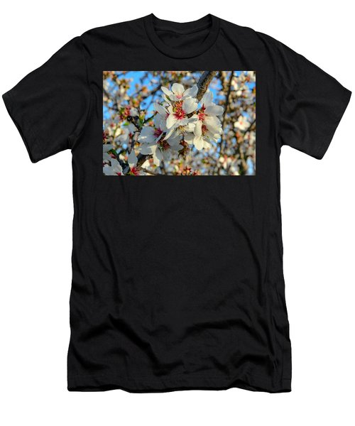 Almond Blossoms Men's T-Shirt (Athletic Fit)