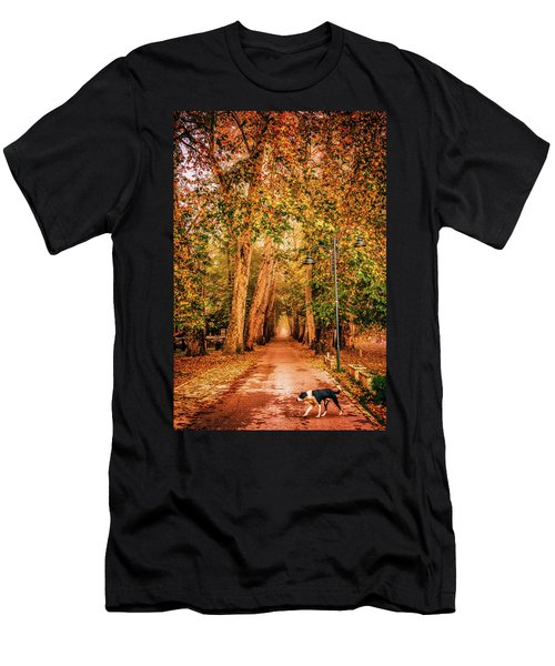 Alone Dog Men's T-Shirt (Athletic Fit)