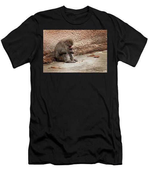 Alone With My Bread Crumbs Men's T-Shirt (Athletic Fit)