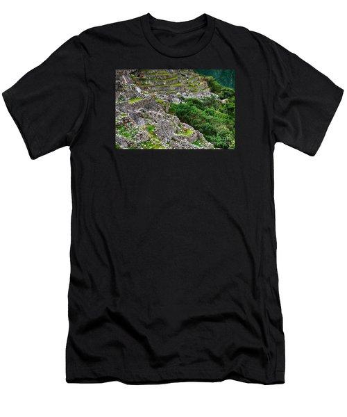 Alpacas At Machu Picchu Men's T-Shirt (Athletic Fit)