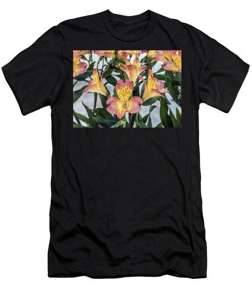 Alstroemeria Blossoms Men's T-Shirt (Athletic Fit)