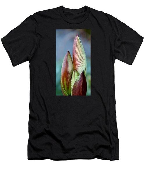 Amaryllis Buds Men's T-Shirt (Athletic Fit)