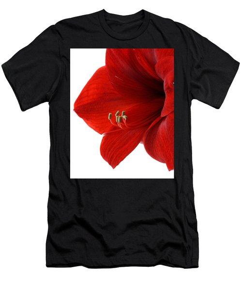 Amaryllis On White 3 Men's T-Shirt (Athletic Fit)