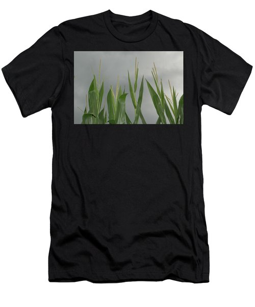 Amber Waves Men's T-Shirt (Athletic Fit)