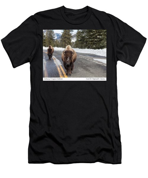 American Bison In Yellowstone National Park Men's T-Shirt (Athletic Fit)