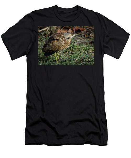 Men's T-Shirt (Slim Fit) featuring the photograph American Bittern by Douglas Stucky