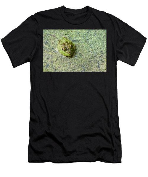 American Bullfrog Men's T-Shirt (Athletic Fit)
