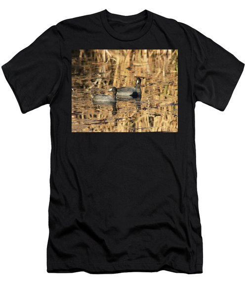 American Coots Men's T-Shirt (Athletic Fit)