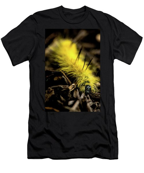 American Dagger Moth Caterpillar Men's T-Shirt (Athletic Fit)