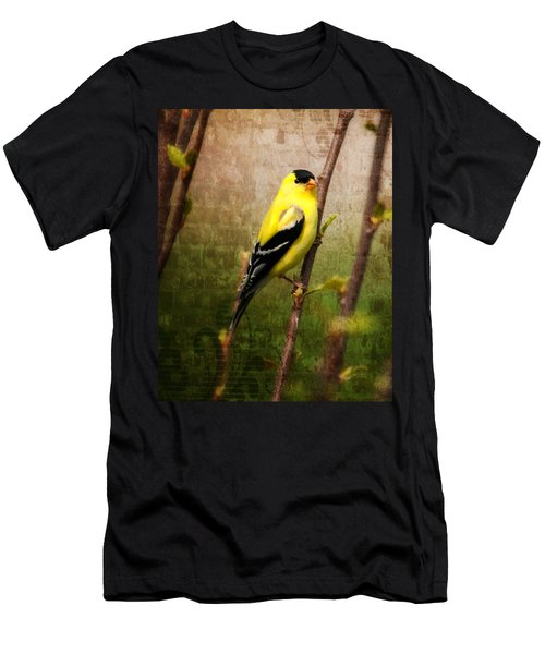 American Goldfinch Men's T-Shirt (Athletic Fit)