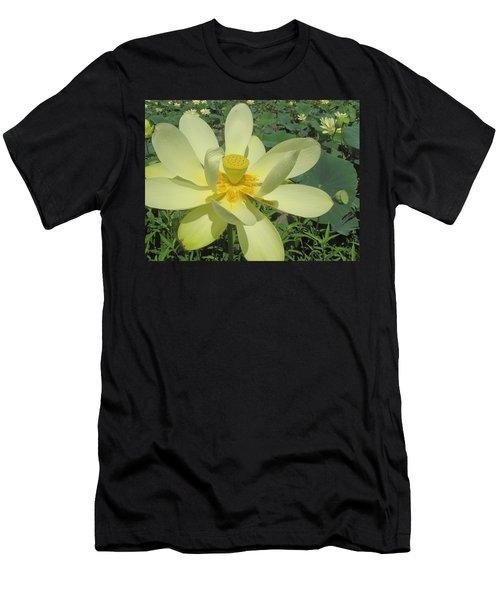 American Lotus Men's T-Shirt (Athletic Fit)