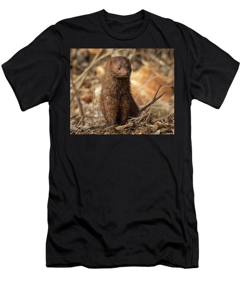 Men's T-Shirt (Athletic Fit) featuring the photograph American Mink At Johnson Park by Ricky L Jones