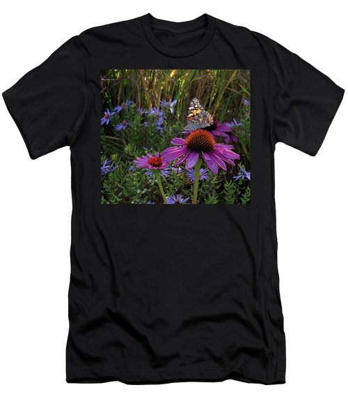 American Painted Lady On Cone Flower Men's T-Shirt (Athletic Fit)