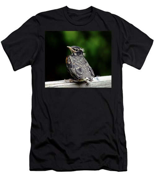 American Robin Fledgling First Flight Men's T-Shirt (Athletic Fit)