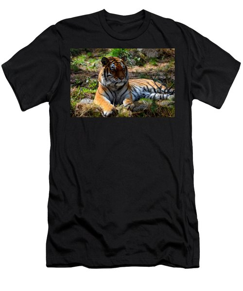 Men's T-Shirt (Slim Fit) featuring the mixed media Amur Tiger 1 by Angelina Vick