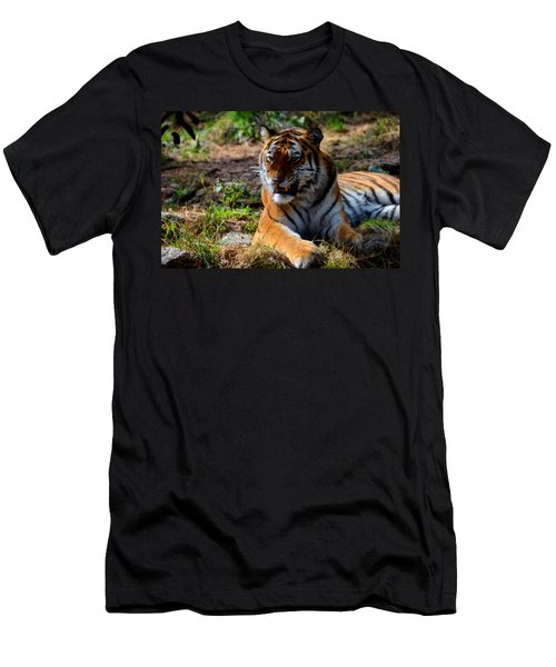 Men's T-Shirt (Slim Fit) featuring the mixed media Amur Tiger 5 by Angelina Vick