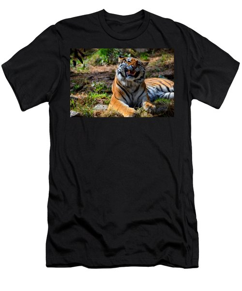 Men's T-Shirt (Slim Fit) featuring the mixed media Amur Tiger 7 by Angelina Vick