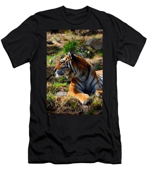 Men's T-Shirt (Slim Fit) featuring the mixed media Amur Tiger 9 by Angelina Vick