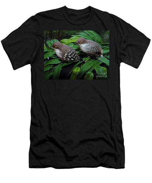 An Old Couple These Two Birds Men's T-Shirt (Athletic Fit)