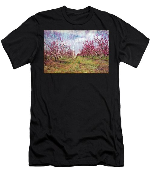 An Orchard In Blossom In The Golan Heights Men's T-Shirt (Athletic Fit)