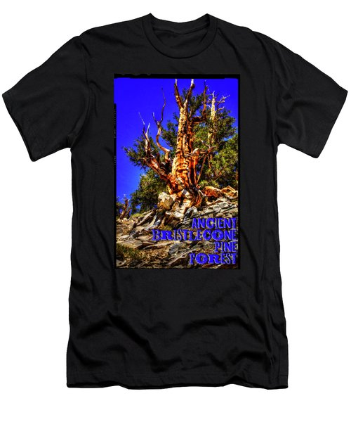 Ancient Bristlecone Pine Forest Men's T-Shirt (Athletic Fit)