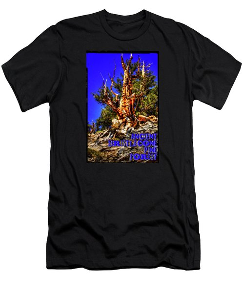 Ancient Bristlecone Pine Forest Men's T-Shirt (Athletic Fit)
