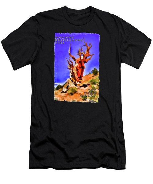Ancient Bristlecone Pine Men's T-Shirt (Athletic Fit)
