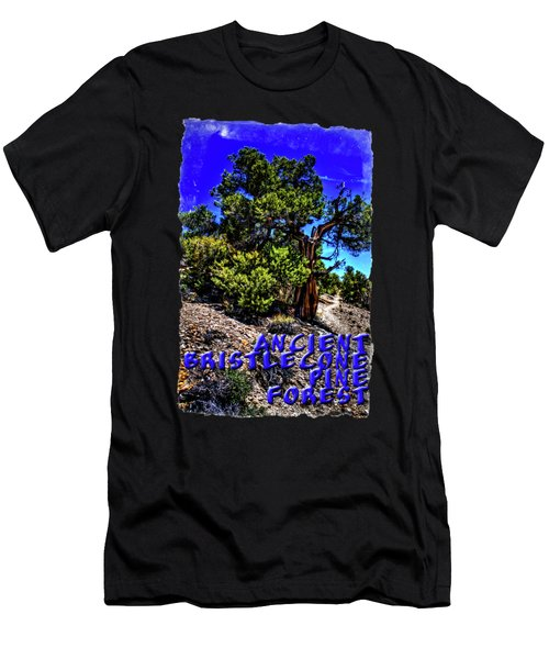 Ancient Bristlecone Pine Tree Men's T-Shirt (Athletic Fit)