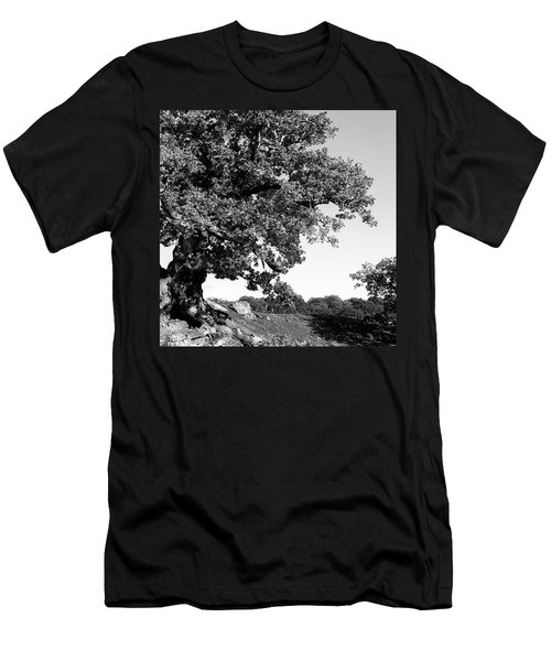 Ancient Oak, Bradgate Park Men's T-Shirt (Athletic Fit)