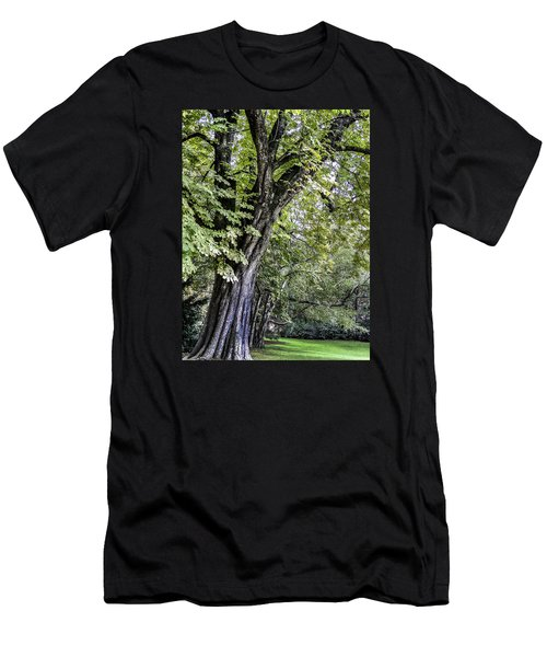 Men's T-Shirt (Slim Fit) featuring the photograph Ancient Tree Luxembourg Gardens Paris by Sally Ross