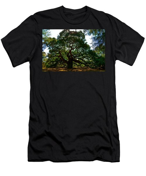 Angel Oak Tree 2004 Men's T-Shirt (Athletic Fit)