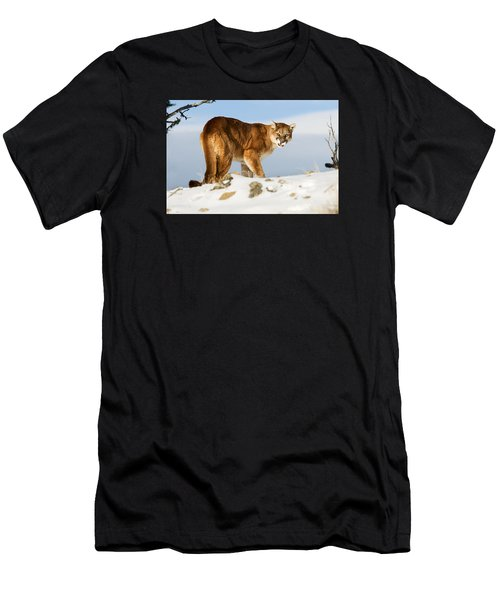 Angry Mountain Lion Men's T-Shirt (Athletic Fit)