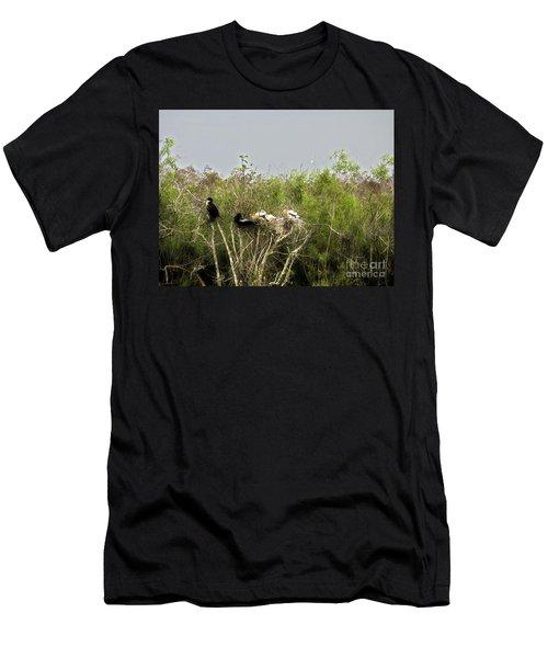 Anhinga Family Men's T-Shirt (Athletic Fit)