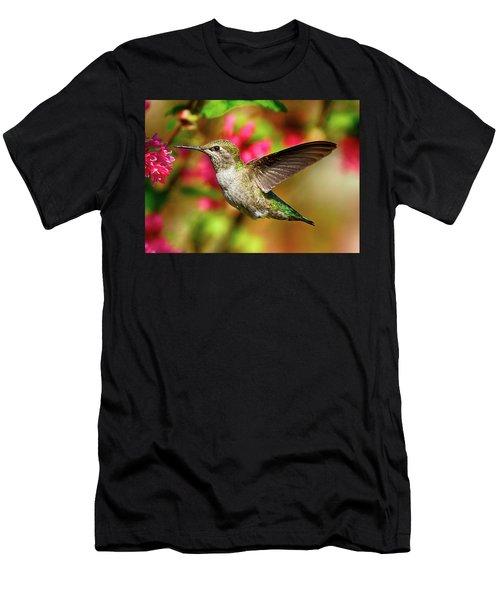 Anna's Hummingbird Men's T-Shirt (Athletic Fit)