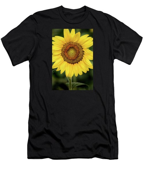 Another Stunning Flower Men's T-Shirt (Athletic Fit)