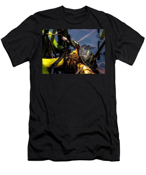 Ant Meets Turtle Men's T-Shirt (Athletic Fit)